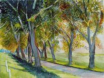Mecklenburg, Allee, Aquarellmalerei, Herbst
