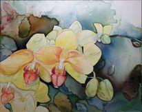 Blumen, Aquarellmalerei, Blüte, Orchidee