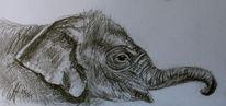 Baby elefant, Skizze, Zeichnung, Zeichnungen