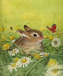 Wiese, Aquarellmalerei, Kaninchen, Grafik