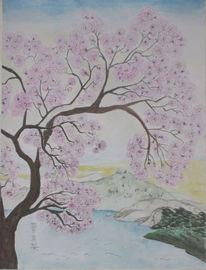 Tuschezeichnung, Frühling, Japanisch, Kirschblüten