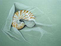 Schnecke, Nautilus, Meer, Tuch
