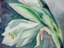 Weiß, Aquarellmalerei, Blumen, Malerei
