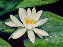 Seerosen, Stillleben, Blumen, Aquarellmalerei