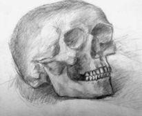 Bleistiftzeichnung, Schädel, Zeichnungen