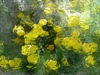 Blumen, Gewächshaus, Glas, Glasblumen