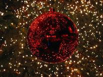 Weihnachtsbaum, Fotografie, Kugel, Weihnachten
