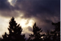Wetter, Berlin, Landschaft, Sturm