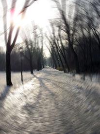 Landschaft, Fotografie, Winter, Berlin