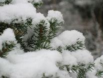 Winter, Fotografie, Landschaft, Schnee