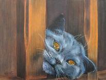 Spycat, Katze, Karthäuser, Figural