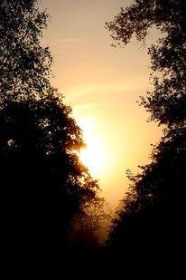 Morgen, Landschaft, Fotografie, Sonnenaufgang