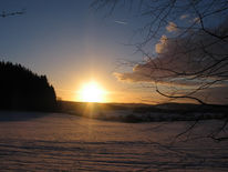 Schnee, Winter, Fußspuren, Abend