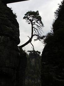 Landschaft, Fotografie, Zeit