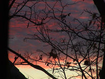 Abendrot, Landschaft, Fotografie, Himmel