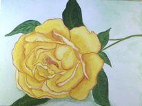 Gelb, Stillleben, Rose, Blumen
