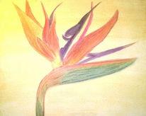 Blumen, Malerei, Strelitzia, Gelb