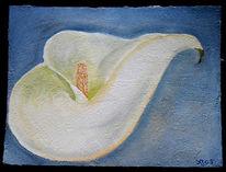Calla, Blumen, Acrylmalerei, Malerei