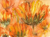Blumen, Malerei, Sommer, Aquarellmalerei