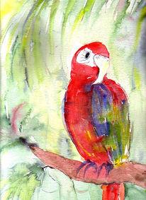 Papagei, Fuchs, Malerei, Aquarellmalerei
