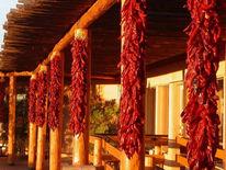 Urlaub, Hochzeitsreise, Reiseimpressionen, Mexiko