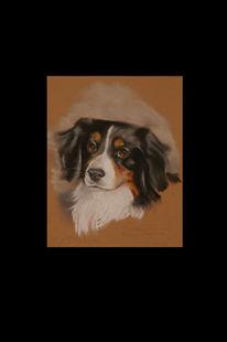 Portrait, Tierportrait, Pastellmalerei, Zeichnung