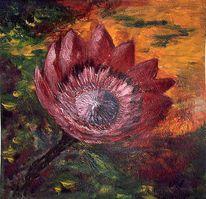 Malerei, Protea, Blumen, Pflanzen