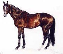 Vollblut, Pferde, Malerei, Figural