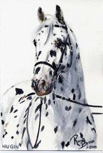 Malerei, Pferde, Figural, Knabstrupper