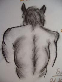 Zeichnung, Zeichnungen, Stier
