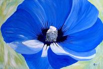 Blumen, Malerei, Hibiskus blau blume, Blau