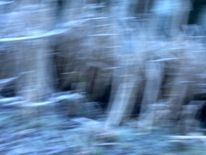 Winkel, Frostschilf, Schweben, Bewegung