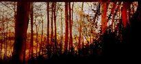 Sonne, Abend, Baum, Rhythmus