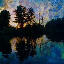 Baum, See, Spiegelung, Abend
