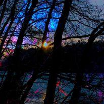 Verschattete bäume, Wasser, Lichtspiele, Sonnenuntergang