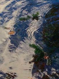 Tannenzweige, Kreis, Wasser, Blätter