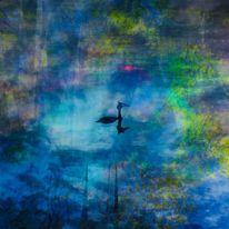 Erdfarben, See, Haubentaucher, Wasser