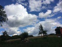 Himmel, Baum silhouetten, Wolken, Tanz