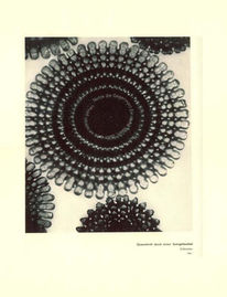 Tam, Digital, Mandala, Figural