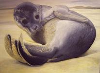 Malerei, Figural, Seehund