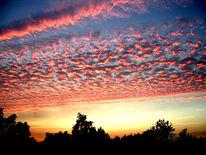 Himmel, Baum, Wolken, Landschaft