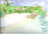 Landschaft, Sand, Palmen, Meer