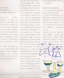 Wermutbranntwein, Zeichnung, Trinker, Alkohol