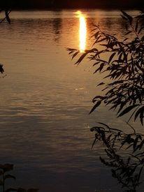 Abend, Stimmung, Sonne, Wasser