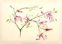 Grafik, Pflanzen, Aquarellmalerei, Blumen