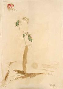 Blumen, Grafik, Aquarellmalerei, Tusche