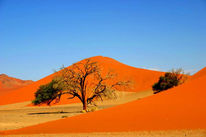 Wüste, Sand, Sonne, Fotografie