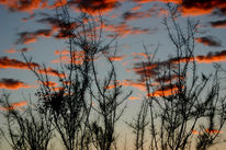 Afrika, Sonnenuntergang, Landschaft, Fotografie
