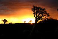 Sonnenuntergang, Landschaft, Fotografie, Afrika