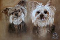 Hund, Pastellmalerei, Malerei, Geschwister